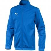 Dressipluus lastele Puma Liga Training Jacket Electric Junior 655688 02