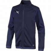 Dressipluus lastele Puma Liga Training Jacket Junior 655688 06