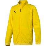 Laste dressipluus Puma Liga Training Jacket Junior 655688 07