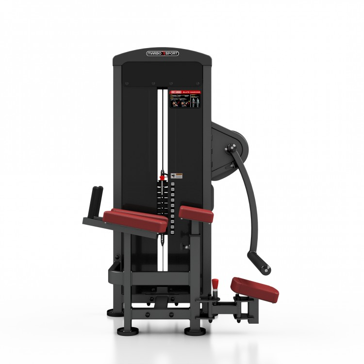 Exercise Machines For Gym : Glute machine